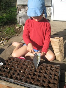 Rusty sows pea seeds on our front porch in the sun this weekend.