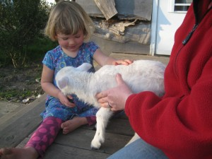 And some farm sweetness. Dottie with a lamb (who has been adopted by my mom -- his own mother wasn't feeding him).