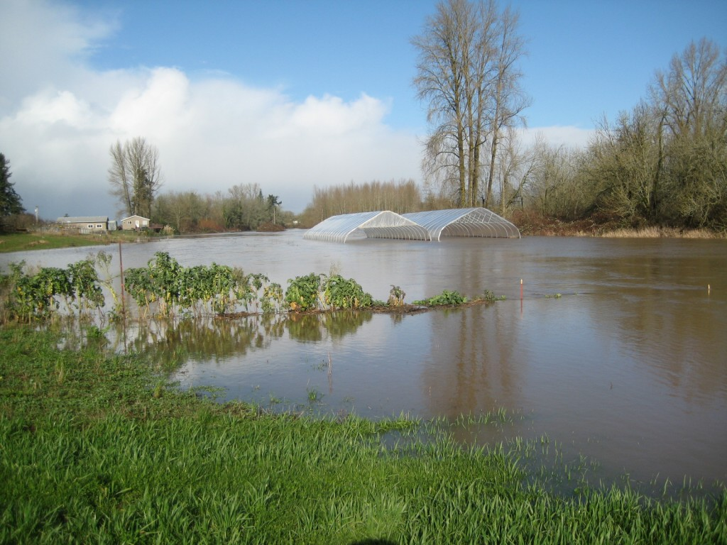 "2012 - The 12th biggest flood event on record forever changed how we see the Willamette River and Grand Island. The water came up so high on the roads that we were ""stuck"" on the island for several days."