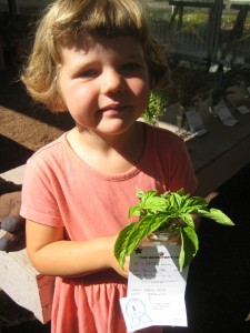 Dottie with her blue ribbon basil