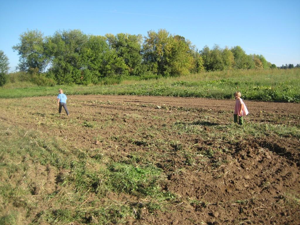 The children run through a freshly worked field.