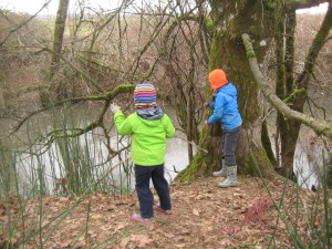 We spent a fun morning recently throwing sticks onto our frozen creek.