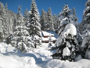 Winter Wonderland (aka Holden Village)