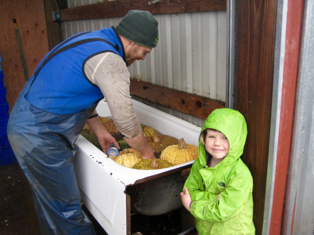 Casey getting back in the swing of winter harvest and wash. Dottie accompanying him.