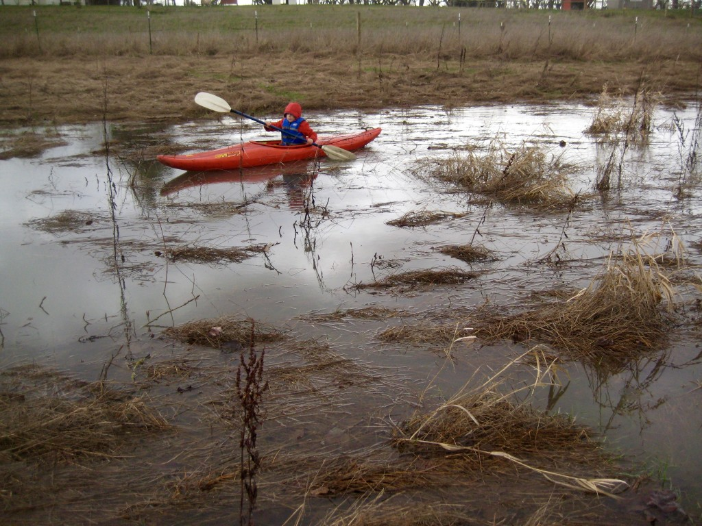 When the river floods ... go kayaking in the field!